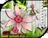 [ND]Flowers Bouquet™ •C•