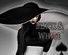 Cat~ Black & White Hat
