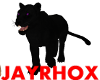 BLACK PANTHER PET