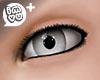 IMVU+ M Eye Gry 0