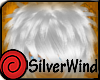 Messy Silver Hair
