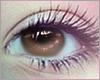💙 Light Brown Eyes