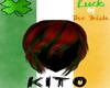 St. Patrick Hair