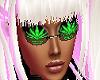 smoke weed shades