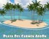 Playa Del Carmen AddOn