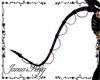 Purple Demon Tail