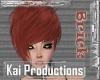 KAI Brick October