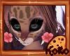 🍪 Kokolat Hibiscus