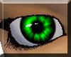 green eye 6 female