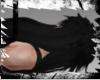 Wild Black ^ Part 2