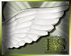 LS~Angel Wings