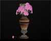 Aari Nature Vila Flowers