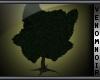 VN Ruins Tree