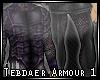 Tebdaer Armour 1