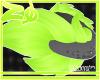 Zane | Tail