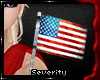 *S Hold American Flag