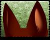 ♡|Somali ears|2
