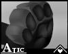 A! Black paws