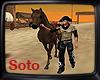 *S*Wild West Horse 3