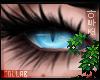 𝕫 Amethyst M/ F Eyes