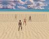 AFIA Beach Volleyball