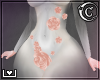  C  Maxy Body Roses