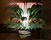 Deco Plants