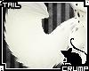 [C] Sadie Tail