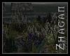 [Z] HI Flowerfield