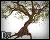 !D! Graveyard Tree