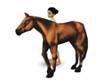 Dubs Horse
