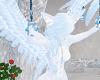 Ice Kitty Angelic Furry