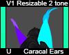 Caracal Ears V1 Dev