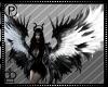 Black & White Wings
