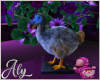 Alice Dodo Bird