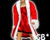 Christmas Dress + Coat
