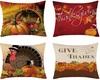 Thanksgiving Pillows 2