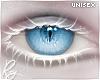 Inu Reg. Blue Eyes