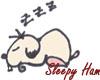 Sleepy Ham