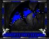 blue & black wings