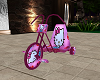 MsKitty Tricycle