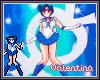 V. Sailor Mercury Badge