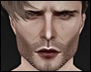 Winchester X Scar MH