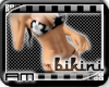 [AM] Bikini Floral Black