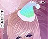 [c] DRVABLE Santa Hat S