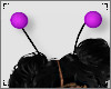 ♥ Antenna