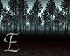 Dark Forest Photo Room