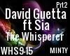 David Guetta Ft Sia prt2