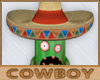 Hat For Cactus 4