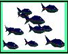 [JAC]Fish Neon